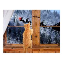 Orange tabby red dot Christmas Postcard