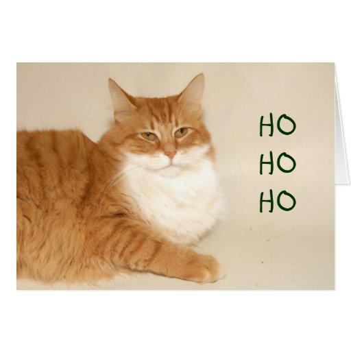 Orange tabby Santa Greeting Card