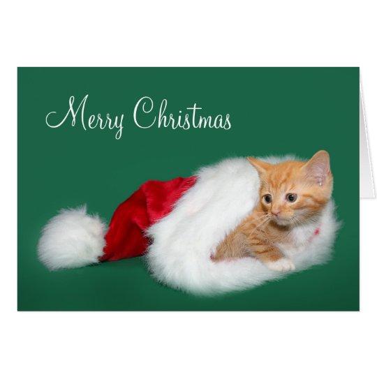 Orange tabby Santa hat Card