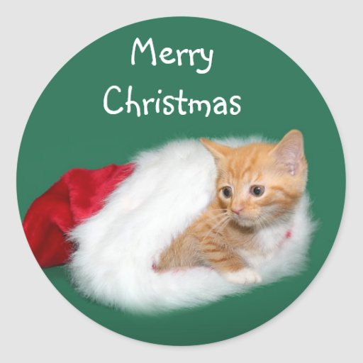 Orange tabby Santa hat Stickers
