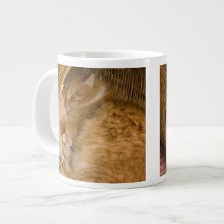 Orange tabby sleeping in hamper 20 oz large ceramic coffee mug