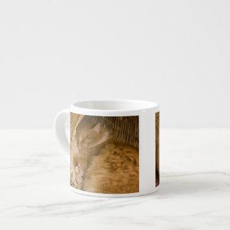 Orange tabby sleeping in hamper 6 oz ceramic espresso cup