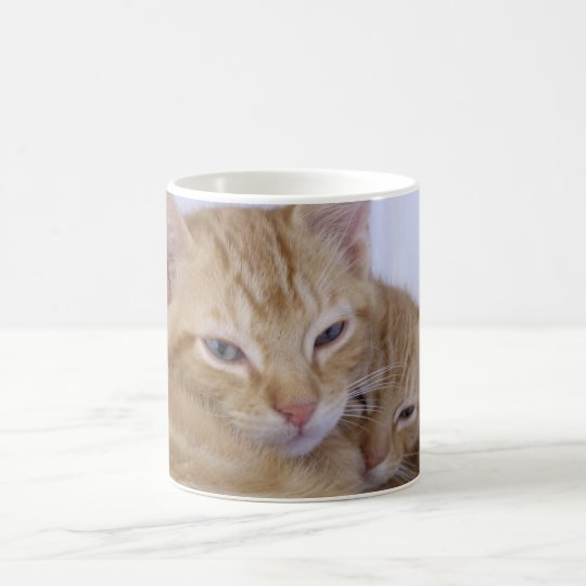 Orange Tabbys Coffee Mug