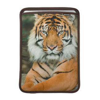 Orange Tiger 13 MacBook Sleeve