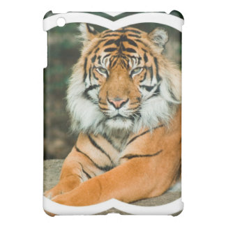 Orange Tiger iPad Case