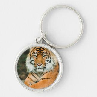 Orange Tiger Keychain