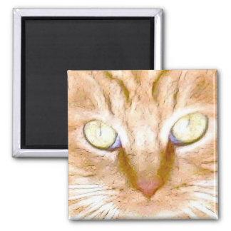 Orange Tiger Kitty Refrigerator Magnets