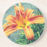 Orange Tiger Lilly Drink Coasters