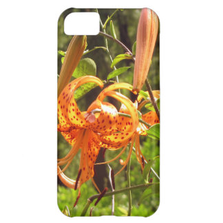 Orange Tiger Lily iPhone 5C Covers