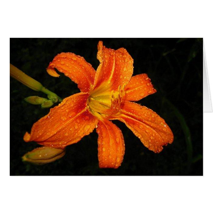 Orange Tiger Lily Flowers Card