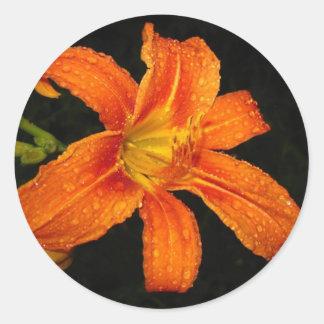 Orange Tiger Lily Flowers Round Stickers