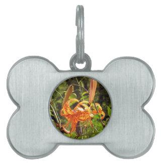 Orange Tiger Lily Pet Name Tags