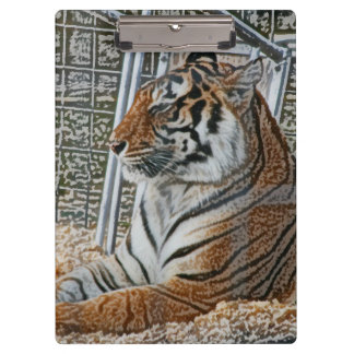 Orange tiger looking right sitting up sketch image clipboard