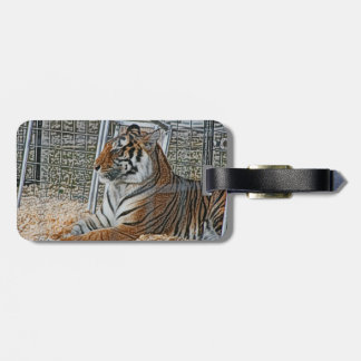 Orange tiger looking right sitting up sketch image luggage tags