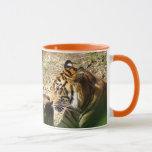 Orange Tiger Mug