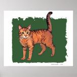 Orange 'Tiger' Tabby Cat Poster