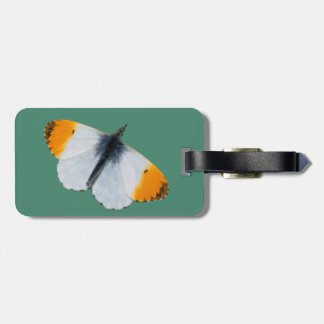 Orange tip butterfly luggage tag