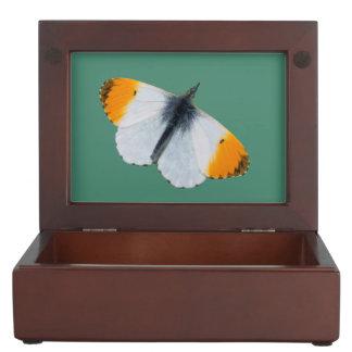 Orange tip butterfly memory box