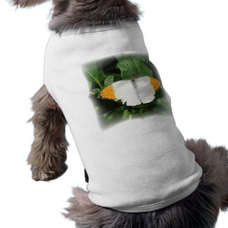 Orange Tipped White Winged Butterfly Dog Shirt