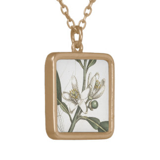 Orange Tree Gold Plated Necklace