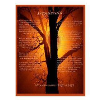 Orange Tree Postcard