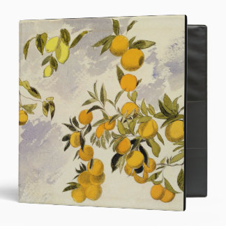 Orange Trees, 1863 (w/c, pen and ink over graphite 3 Ring Binder