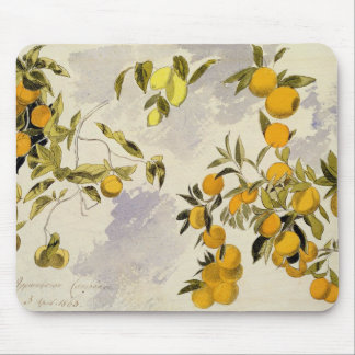 Orange Trees, 1863 (w/c, pen and ink over graphite Mouse Pad