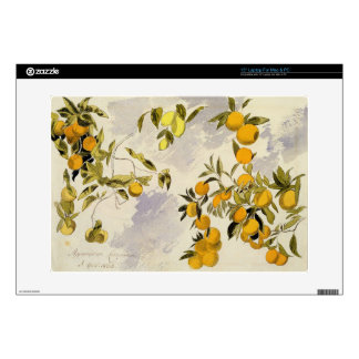 Orange Trees, 1863 (w/c, pen and ink over graphite Skins For Laptops