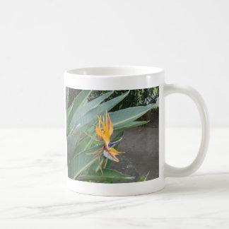Orange tropical Flower Coffee Mug