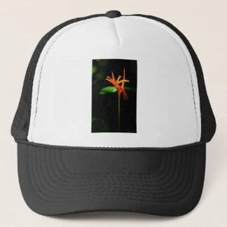 Orange tropical flowers isolated against black bac trucker hat