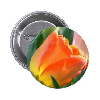 Orange Tulip Button