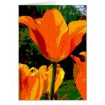 Orange Tulip Card