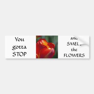 Orange Tulip Closeup Car Bumper Sticker
