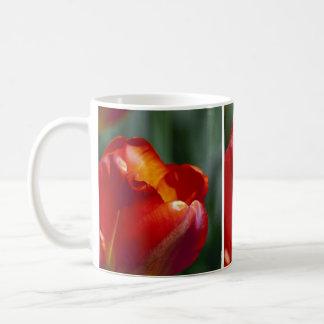 Orange Tulip Closeup Coffee Mug