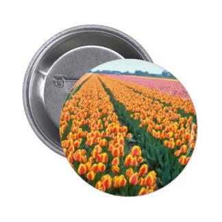 Orange Tulip fields, Holland flowers Pins