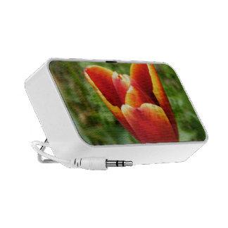Orange Tulip Flower Speakers