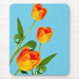 Orange Tulip Mouse Pad
