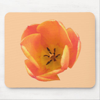 Orange Tulip Mousepad