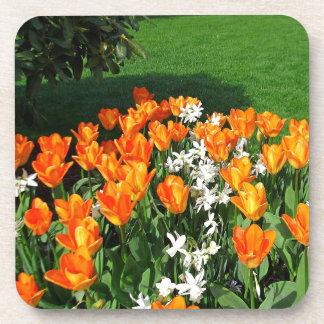 Orange Tulip On Multiple Products Coaster