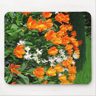 Orange Tulip On Multiple Products Mouse Pad