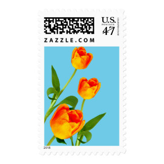 Orange Tulip Postage