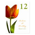 Orange Tulip Table Number Card Postcard