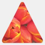 Orange Tulip Triangle Sticker