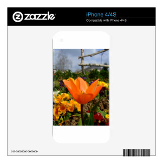 Orange Tulip with grey clouds ! iPhone 4S Skins