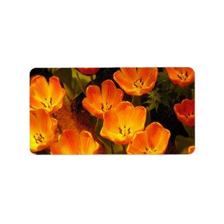 Orange Tulips Address label