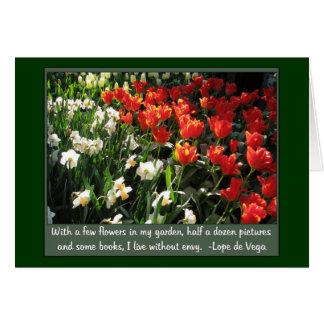 Orange tulips and white narcissus card