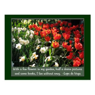 Orange tulips and white narcissus postcard