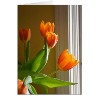 Orange Tulips | Brad Hines Photography Notecard