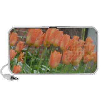 Orange Tulips iPod Speakers