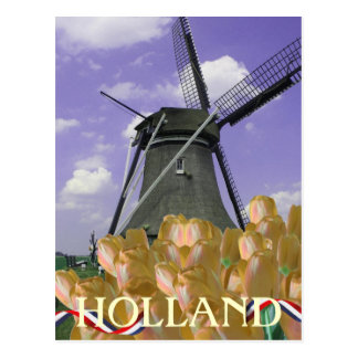 Orange Tulips Windmill Art Holland Postcard